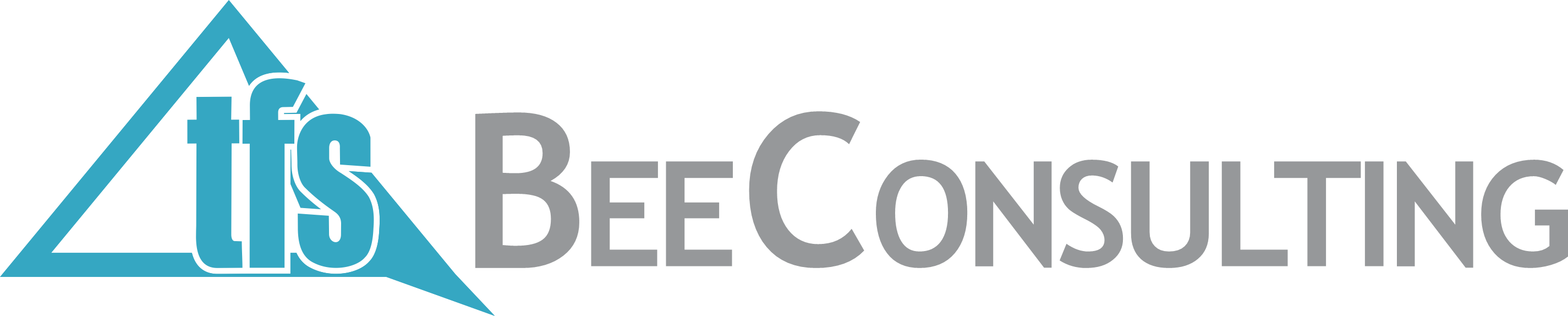 TFS BeeConsulting